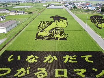 [Image: japan-rice-contaminated-by-radiation.jpg]